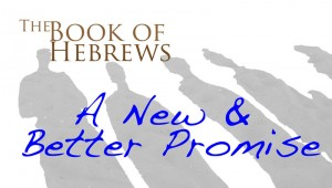 Hebrews Bulletin